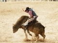 Cody-Rodeo-voyage-ouest-americain-K