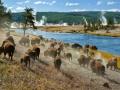 Yellowstone-2-K
